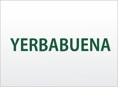 yerbabuena-laperlasured